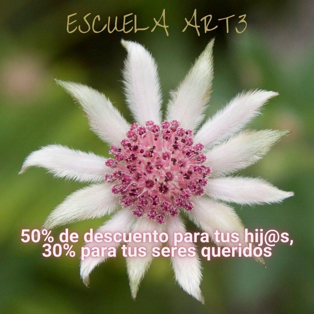 ESCUELA ART3-11